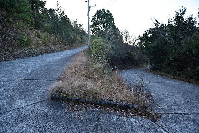 teshima-danyama-road03
